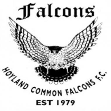 Hoyland Common Falcons
